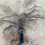 tropical plants. Tree-fern. 1854, Alexey Kondratievich Savrasov