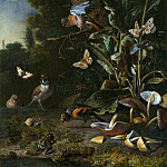 Melchior dHondecoeter – Birds, Butterflies and a Frog among Plants and Fungi, Part 5 National Gallery UK