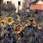Гюстав Кайботт - Sunflowers, Garden at Petit Gennevilliers - 1885