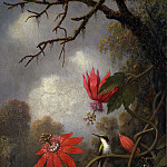 Hummingbird and Passionflowers, John Martin