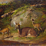 Metropolitan Museum: part 1 - Arthur Fitzwilliam Tait - Doe and Two Fawns