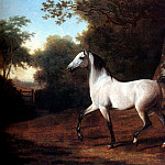 Swiss artists - Agasse Jacques Laurent A Grey Arab Stallion In A Wooded Landscape