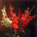 American artists - Bakhuyzen Geraldine Jacoba Van De A Still Life With Gladioli And Roses