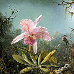 American artists - Heade, Martin Johnson (American, 1819-1904) 3