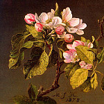 Heade, Martin Johnson , American artists