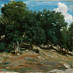 Metropolitan Museum: part 3 - Camille Corot - Fontainebleau: Oak Trees at Bas-Bréau