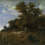 Metropolitan Museum: part 3 - Théodore Rousseau - The Edge of the Woods at Monts-Girard, Fontainebleau Forest