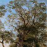Johann Georg von Dillis – Beech Trees in the English Garden, Munich, Metropolitan Museum: part 3