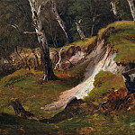 Metropolitan Museum: part 3 - Thomas Fearnley - Escarpment with Tree Stumps, Romsdal