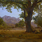 Metropolitan Museum: part 3 - German Painter, 19th century - Oak Tree in a Mountainous Landscape