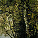 Study of Beeches, John Eder