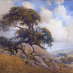 Metropolitan Museum: part 3 - Percy Gray - Windswept Tree and Rocks