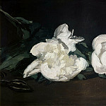 Édouard Manet - Branch of White Peonies and Shears
