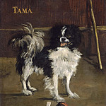 Tama, the Japanese Dog, Édouard Manet