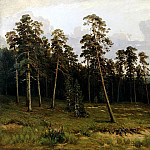 900 Classic russian paintings - Shishkin Ivan - Edge of the Forest. 1