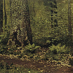 path in the deciduous forest. Ferns. Around 1895, Isaac Ilyich Levitan