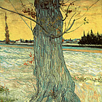 Trunk of an Old Yew Tree, Vincent van Gogh