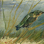 The Kingfisher, Vincent van Gogh