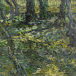 Undergrowth with Ivy, Vincent van Gogh