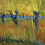 Pollard Willows With Setting Sun, Vincent van Gogh