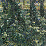 Tree Trunks with Ivy, Vincent van Gogh