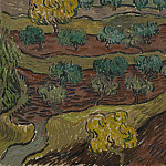 Olive Trees on a Hillside, Vincent van Gogh