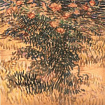 Vincent van Gogh - Flowering Shrubs