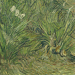 Vincent van Gogh - Garden with Butterflies