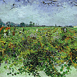 The Green Vineyard, Vincent van Gogh