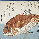 Ando Hiroshige – Sheet Red sea bream, Part 01 Hermitage