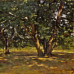 Claude Oscar Monet - Fontainebleau Forest