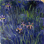 Irises 2, Claude Oscar Monet