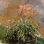 Hamerocallis, Claude Oscar Monet