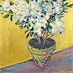 White Azaleas in a Pot, Claude Oscar Monet