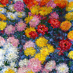 Claude Oscar Monet - Chrysanthemums