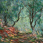 Olive Tree Wood in the Moreno Garden, Claude Oscar Monet