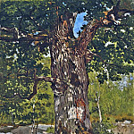 The Bodmer Oak, Claude Oscar Monet