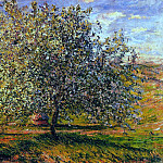 Tree in Flower near Vetheuil, Claude Oscar Monet