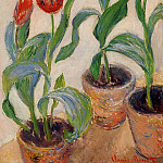 Three Pots of Tulips, Claude Oscar Monet