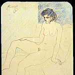 Pablo Picasso (1881-1973) Period of creation: 1889-1907 - 1903 Femme nue
