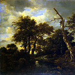 Ruisdael, Jacob van ai – The river in the woods, part 10 Hermitage