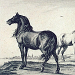 part 10 Hermitage - Potter, Paulus - Two horses