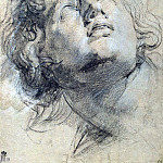 The head of a young man looking up, Peter Paul Rubens