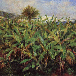 Field of Banana Trees – 1881, Pierre-Auguste Renoir