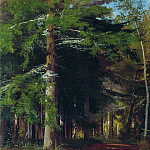 Study for the painting felling of the forest. 1867 42h34, Ivan Ivanovich Shishkin