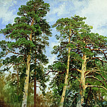 tops of the pines. Etude 1890 40. 7h53, Ivan Ivanovich Shishkin