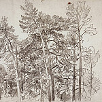 tops of the pines. 1890 32, 5h41, 8, Ivan Ivanovich Shishkin
