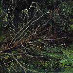 In the fir forest 39h51, Ivan Ivanovich Shishkin