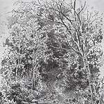Ivan Ivanovich Shishkin - Stream in the Forest 1880, 66h41, 5