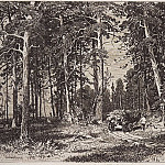 Ivan Ivanovich Shishkin - Outskirts of pine groves. 1876 9, 3h13, 3